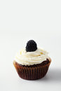 Cupcake a with blackberry on a light background Royalty Free Stock Images