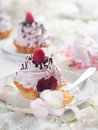 Cupcake with chocolate and raspberry selective focus Royalty Free Stock Photo
