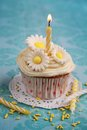 Cupcake with flowers daisy on top and a birthday candle Stock Photography