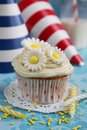 Cupcake with flowers daisy on top and birthday hats in background Stock Photos