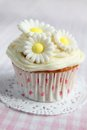 Cupcake with flowers daisy on top on a pink and white checkered tableclothe Royalty Free Stock Photos