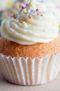Cupcake with Icing and Sprinkles Stock Images