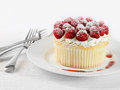Cupcake with rasberries and cream Royalty Free Stock Image