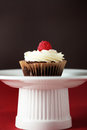 Cupcake a with rasberry on a stand Royalty Free Stock Images