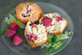 Cupcake with raspberry and cereal oat flakes Stock Images