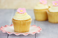 Cupcake on Saucer Stock Photography