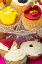 Cupcake selection Royalty Free Stock Images