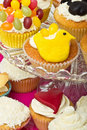 Cupcake selection Stock Photography
