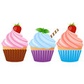 Cupcake three cake with berries on vector Stock Photo