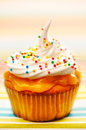 Cupcake with whipped cream Stock Photography