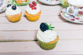 Cupcakes with berries Royalty Free Stock Photo