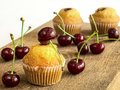 Cupcakes with cherries on a white background Royalty Free Stock Image