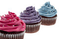 Cupcakes isolated sweet in colour Stock Photography