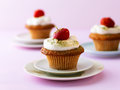 Cupcakes with strawberry and cream topping Royalty Free Stock Photos
