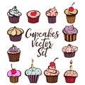 Cupcakes vector set