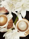 Cups of coffee with flowers Royalty Free Stock Photo