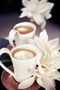 Cups of milk coffee with flowers Royalty Free Stock Photos