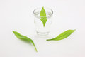 Cups, purified water, green leaves Royalty Free Stock Photography