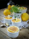 Curd pudding baked with lemon Stock Photography