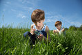 Curious Boy With Magnifying Glass Exploring White Daisy On Green Field At Spring Time Royalty Free Stock Photo