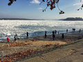 Curious crowd looking at the icebergs covering the vast Danube r