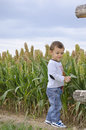 Curious cute boy standing at the edge of a field child and nature concept Stock Photo