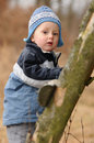 Curious little boy standing wooden step ladder forest looking to camera Stock Image