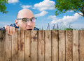 A curious neighbor Royalty Free Stock Photo