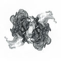 Curls of black smoke on a white background.