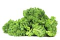 Curly kale Royalty Free Stock Photo