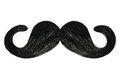 Curly mustache isolated on white Royalty Free Stock Photo