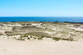 Curonian spit dunes on the near nida lithuania Stock Photos
