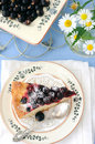 Currant pie Royalty Free Stock Images
