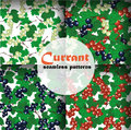 Currant seamless pattern collection vector set