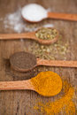 Curry, pepper, oregano and cooking salt Royalty Free Stock Photo