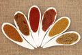 Curry powder and paste varieties in white porcelain leaf shaped dishes over hessian background Stock Photography