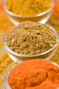 Curry powders Stock Photography