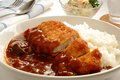 Curry rice with pork cutlet called katsu curry in japanese vegetabe and and potato salad Royalty Free Stock Photos