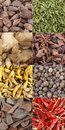 Curry spice composite Stock Images