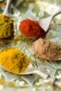 Curry spoons of powder allspice paprika Royalty Free Stock Photos