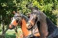 CURTEA DE ARGES, WALLACHIA/ROMANIA - SEPTEMBER 16 : Plastic Horses in the Monastery grounds in Curtea de Arges Wallachia Romania Royalty Free Stock Photo