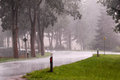 Curve of a rain wet road in heavy rain with trees reflector posts and signs Royalty Free Stock Images