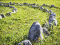 Curve of rocks at a meadow Stock Photo