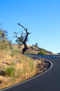 Curved asphalt road in Andalusia Stock Images