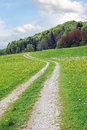 Curved bike way, springtime meadow Royalty Free Stock Photo