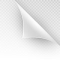 Curved corner of a white paper. EPS 10 vector