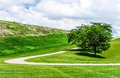 Curved path to the clouds paved curving up a hill beautiful fluffy are in sky Royalty Free Stock Photo