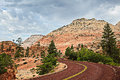 Curved red rock asphalt road running through the landscape of sa sandstone mountain formations in zion national park in utah usa Stock Images