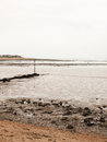 Curved seaside scene pipe groyne beach seaweed pebbles Royalty Free Stock Photo