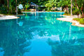 Curved swimmingp ool swimming pool in a tropical landscape Royalty Free Stock Image